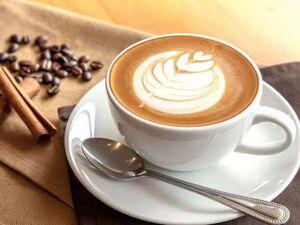 مصرف زیاد قهوه حجم مغز را کاهش میدهد