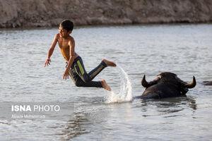 عکس/ شادی مردم پس از رهاسازی آب کرخه