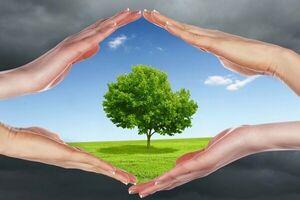 پیشگیری از آلزایمر با هوای پاک