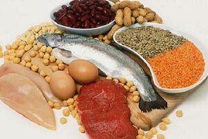 ارتباط زمان مصرف پروتئین با میزان عضلهسازی