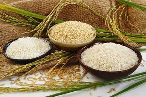 کاهش واردات برنج خارجی/ قیمت برنج خارجی افزایش نداشته است