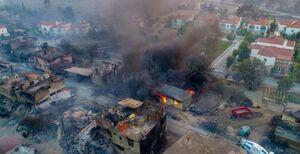 افزایش قربانیان آتش سوزی جنگل های در ترکیه