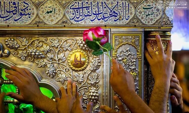 کاروان شادی جوانان عراقی در نجف اشرف +عکس و فیلم