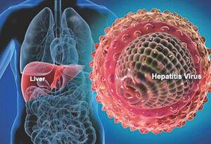هپاتیت دلتا چیست؟