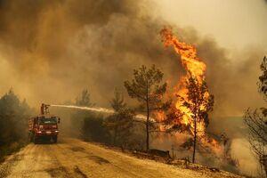 تصاویر جدید از وسعت آتش سوزی ترکیه