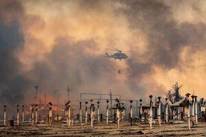 فیلم/ جنگلهای ایتالیا همچنان میسوزد