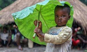 چتر طبیعی کودکان هنگام بارش باران