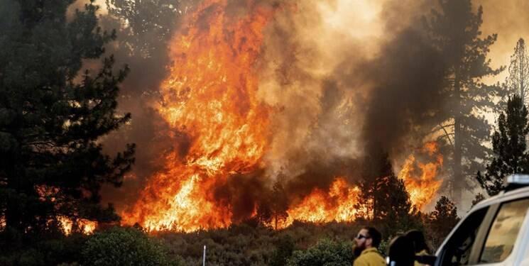 جولای، ماه آتشسوزی گسترده در سراسر جهان
