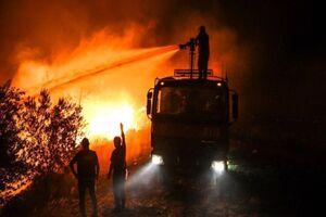 فیلم/ شهر میلاس ترکیه در آستانه یک فاجعه