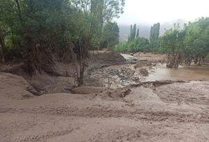 فیلم/ وضعیت وخیم یک روستا پس از سیل در الموت