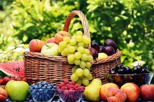 مقابله با زوال حافظه با مصرف میوه و سبزیجات