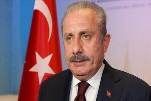 رئیس مجلس ترکیه وارد تهران شد