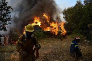 فیلم/ بحران اقلیمی جهان؛ آتشسوزی گسترده در سواحل یونان