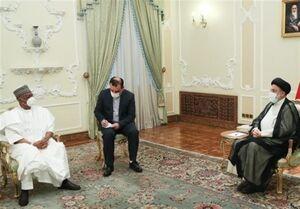 رئیسی: ایران و نیجریه ظرفیتهای مناسبی برای گسترش روابط دارند