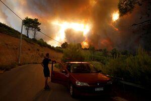فیلم/ تصاویر دراماتیک از آتش سوزی های کالیفرنیا