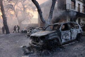 فیلم/ آتش جنگلهای یونان را خاکستر کرد