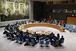 آمریکا موافق حق وتوی هند در شورای منیت نیست