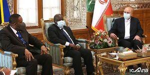 دیدار رؤسای مجالس تانزانیا و زنگبار با رئیس مجلس شورای اسلامی