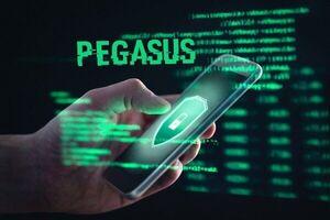 از نرم افزار جاسوسی «پگاسوس» چه میدانید؟ +فیلم