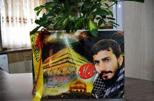گرامیداشت یاد شهید صدرزاده با جمعخوانی کتاب