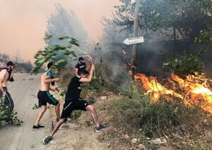 الجزایر درگیر آتشسوزیهای گسترده عمدی