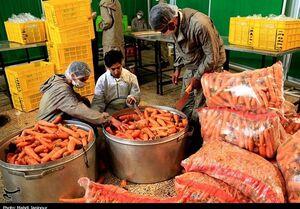 کرونا هویج را گران کرد
