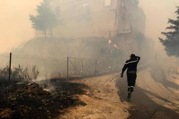 افزایش قربانیان آتشسوزیهای الجزایر به ۶۵ نفر +عکس و فیلم