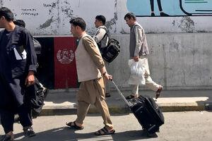 توییت میثم مطیعی درباره حوادث افغانستان