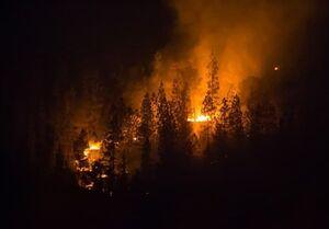 اسرائیل برای مهار آتش سوزی از دیگر کشورها کمک خواست