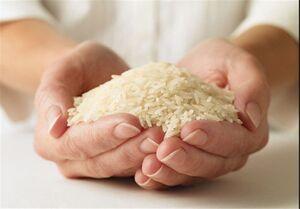 قیمت برنج هندی از مرز ۳۰هزار تومان گذشت