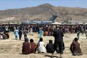 کویت با عبور ۵ هزار پناهجوی افغانستانی از خاک این کشور موافقت کرد