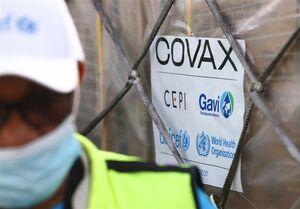 تلاش برای واردات ۳ میلیون دُز واکسن کرونا از کوواکس