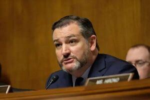 سناتور تد کروز: «بایدن» حملات تروریستی را به آمریکا دعوت میکند