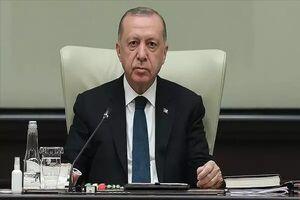 اردوغان: تنها خواسته ترکیه ایجاد ثبات فوری در افغانستان است