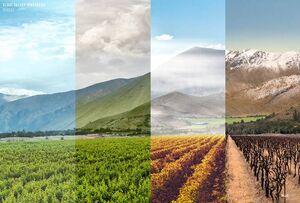 عکس/ چهار فصل تویسرکان زیبا از یک قاب