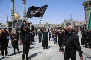 عکس/ عزاداری شهادت امام زین العابدین(ع) در قم
