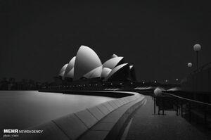 تک عکسهای سیاه و سفید