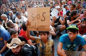زوایای پنهان مشارکت امارات و اسرائیل در قاچاق اعضای بدن انسان/ کودکان سوری، قربانی شراکت امارات و شبه نظامیان کُرد +تصاویر