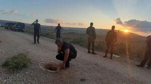 فرار از زندان؛ نسخه مقاومت فلسطین/ فاجعه سیستم اطلاعاتی اسرائیل در امنیتیترین زندان مناطق اشغالی +فیلم و تصاویر
