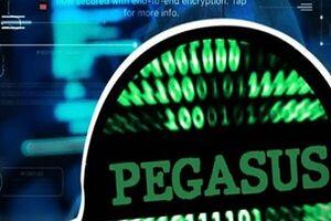 افشای استفاده پلیس جنایی آلمان از پگاسوس