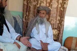نخست وزیر طالبان وعده تامین امنیت جهان را داد
