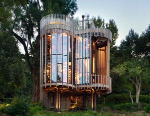 عکس/ ساخت خانهای مدرن به شکل تنه درخت