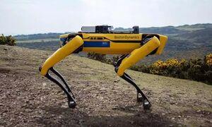 سگ رباتیک خرابی دکل های برق را گزارش میدهد