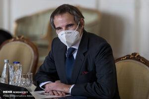 دیدار مدیرکل آژانس بینالمللی انرژی اتمی با محمد اسلامی