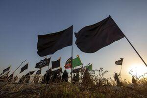 حال و هوای پیادهروی اربعین در جنوب عراق +عکس