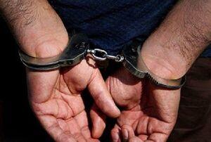 سارقان ۵۰ میلیاردی منازل در زندان دستگیر شدند