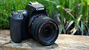 قیمت انواع دوربین در بازار +جدول