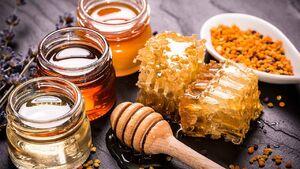 قیمت انواع عسل در بازار