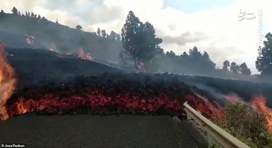 فیلم/ ورود مواد مذاب آتشفشانی به خانهها