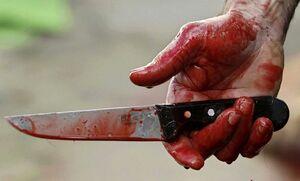 ضربههای مرگبار پیرمرد برای قتل همسر